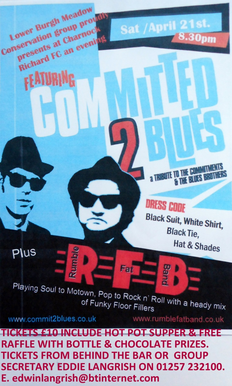 Committed to Blues Poster ( to print ).jpg
