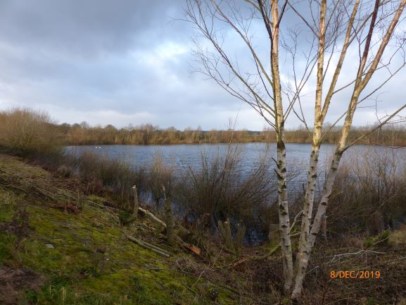 Grimsargh Wetlands Dec2019Resized9.JPG